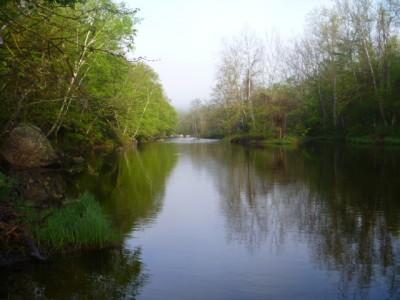farmington river, flyfishing, relaxation, trout, camping, rising fish