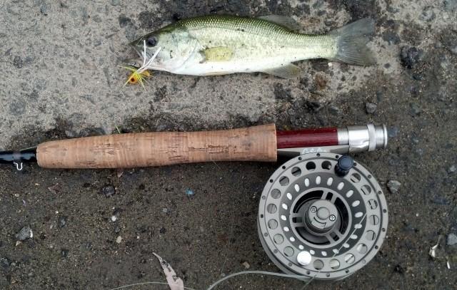 Lake Kenoshia, On The Fly, warmwater flyfishing, bass, bream, poppers, kayak fishing